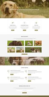 Website Template 51221 Dog Club Pet Custom Website Template Dog