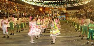 Resultado de imagem para Logotipo da Festa de Santana de Currais Novos 2017.