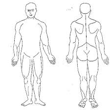 Chiropractic Body Chart Human Body Diagram Blank Human Body Diagram Body Diagram