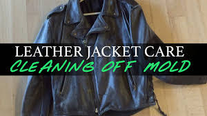 leather jacket care cleaning off mold