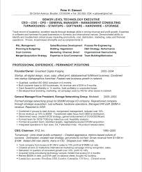 Make Free Resume Online Interesting Cheap Resume Builder List Of Skills To Put On Resume Free Resume