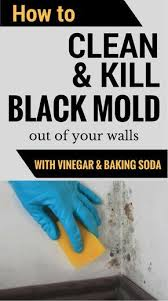 kill mold off your walls with vinegar