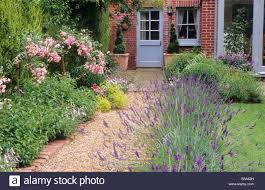 Small Picture Classy 20 Pink Garden Design Design Decoration Of Purple Garden