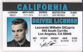 Fake Novelty Drivers License Leonardo - Dicaprio Identi
