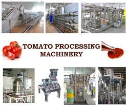 Tomato Sauce Production Flow Chart Tomato Processing Plant Sauce Ketchup Paste Tomato