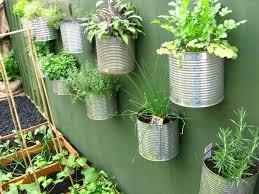 Patio Vegetable Container Garden 33110  YouTubeContainer Garden Ideas Vegetables