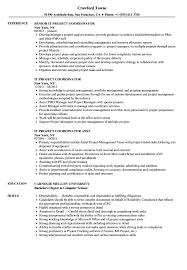 It Project Coordinator Resume Samples Velvet Jobs