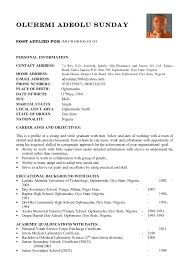 Gallery Of Resume Cv Example