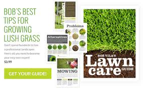 lawncare ad piano bob vila s lawn care guide powered by tinypass downloads
