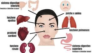 Risultati immagini per la mappa sul viso dei vari disturbi