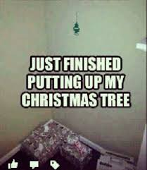 Funny Christmas Quotes Fascinating 48funnychristmasmemes48christmasquotes QuotesHumor