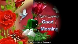 good morning wishes greetings e card good morning whatsapp video video dailymotion