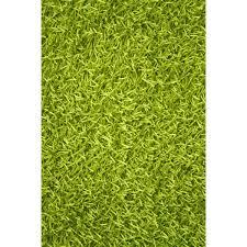 bathroom lime green bath rug gorgeous top fantastic noble house sara area light lime green