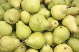 All About Pawpaws And Pawpaw FruitWhat Fruit Trees Grow In Michigan