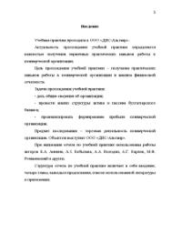 Отчет об учебной практике на примере ООО ДНС Альтаир Отчёт по  Отчёт по практике Отчет об учебной практике на примере ООО ДНС Альтаир