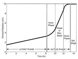 Phases Of Labor Chart Normal Labor And Delivery Glowm