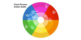 Cross Processing Color Guide Lomography