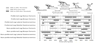 6 An Emg Profile Of The Eight Lower Limb Muscles Of The