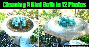 humming bird bath hummingbird fountain how to make a sparkling clean fountains solar powered hummingbi solar hummingbird bath fountain bird fountains diy