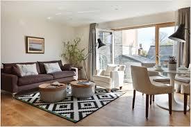 interior splendid apartment living room interior design ideas with marvelous black white rug idea also