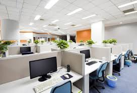 modern office plants. Decorate Office Jessica. White-decorating-and-indoor-plants-in- Modern Plants G
