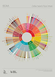 How To Use The Coffee Tasters Flavor Wheel In 8 Steps