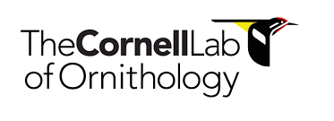 cornell logo – Nature in Novato
