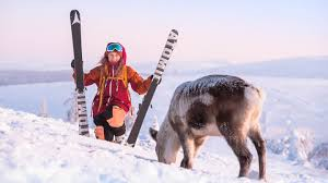 Seasonal Winter Jobs Seasonal Work In Lapland Faq Live And Work Lapland