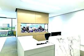 office fish tanks. Office Fish Aquarium Desk Tank Aquariums Modern Wall Law For The Well Placed Is Tanks