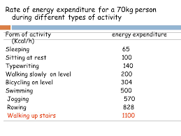 Energy Expenditure Chart For Activity Energy Balance And Temperature Regulation Ppt Video Online