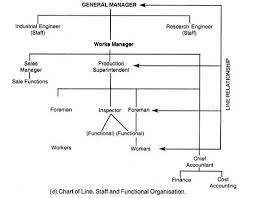 5 Main Types Of Organisation