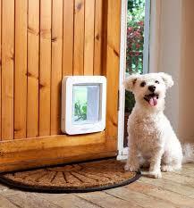 electronic dog doors. Enjoy The Convenience Of An Electronic Pet Door Dog Doors