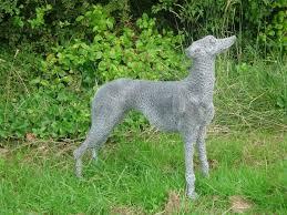 greyhound metal en wire netting