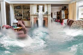 That's why we offer a discount if you install a backwater. What S Covered In A Water Damage Claim And How To Maximize It Az Big Media