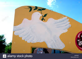 painting of white dove of peace with olive branch in mouth minneapolis minnesota usa
