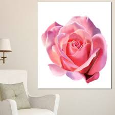 designart pink rose sketch on white background flowers canvas wall artwork 3 panels on pink rose canvas wall art with designart pink rose sketch on white background flowers canvas wall