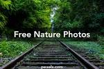 Download Foto Nature Images · Pexels · Free Stock Photos