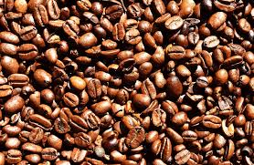 coffee beans. Contemporary Coffee Coffee Beans 626  Intended Beans I
