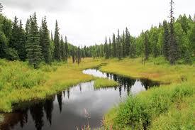 outdoor nature photography. Alaska Wild Photography/Aerial,Animals \u0026 Pets,Events,Nature Wildlife, Outdoor Nature Photography O