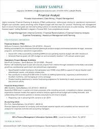 Mis Resume Sample It Manager Resume Sample Business Technology ...