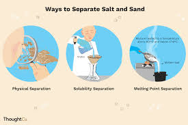 Animal Flow Chart Ks2 How To Separate Salt And Sand 3 Methods