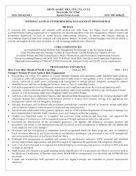 Resume For Lean Consultant Therpgmovie