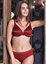 Panties Size Chart Tips To Measure Your Panty Size Enamor