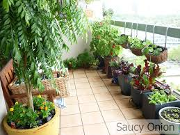 Full Size of :2 Hanging Garden For Balconies 563583340844646802 57 Pretty  Balcony Garden Ideas Complete ...
