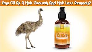emu oil as a hair growth