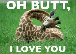 40 Most Funniest Giraffe Meme Pictures And Photos Extraordinary Giraffe Quotes
