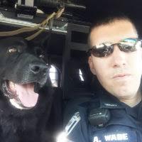 Muleskinner Police