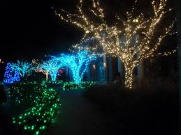 outdoor lighting decorations. Chic Yard Lighting Ideas And With Delightful Led Lamps Trees For Garden Lights Installations Design Outdoor Decorations