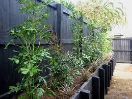 Small Picture NZLANDSCAPES Landscape Design Blog New Zealand NZ Garden