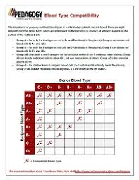 Blood Compatibility Chart